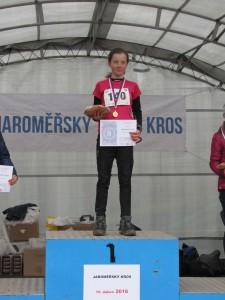 kros_kaja